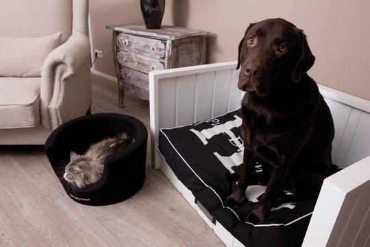 houten-hondenmand-rozemarijn-wit-vanaf-69-99-2